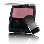 Frosty Bordeaux + Perfect Powder Blusher
